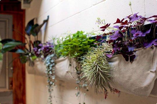 Come arredare il bagno con le piante ornamentali tanti consigli