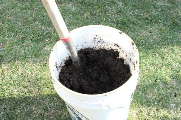 secchio, strumento indispensabile per lavorare il terriccio prima di trasferirlo nel vaso