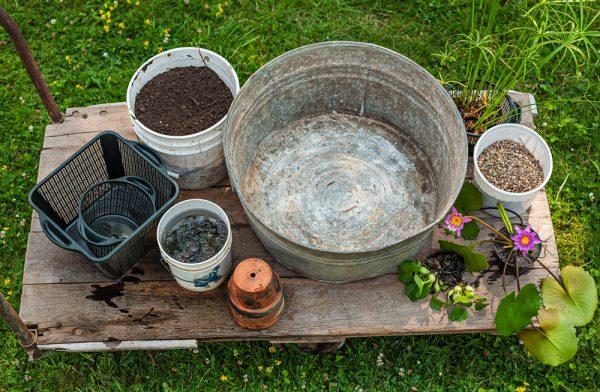 Contenitore e strumenti necessari per costruire un giardino acquatico
