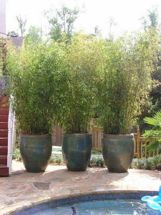 8 modi per aumentare la privacy del giardino utilizzando - Recinzioni privacy giardino ...