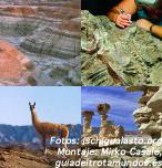 Ischigualasto: Cuando los dinosaurios dominaban la tierra