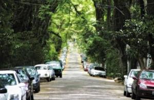 La calle más bonita del mundo está en BRASIL - Rua Gonçalo de Carvalho - rua-goncalo-de-carvalho1-300x195