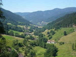 De paseo por la Selva Negra - 1280px-Simonswälder_Tal_150707-300x225