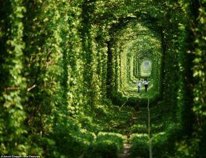 Paseando por el túnel del amor - el-tunel-del-amor-1-300x230
