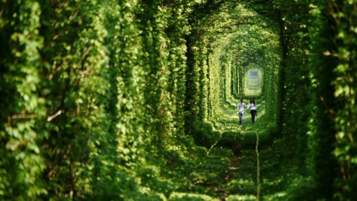 Paseando por el túnel del amor