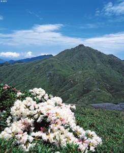 La isla del Sugi - miyanouradake-8-244x300