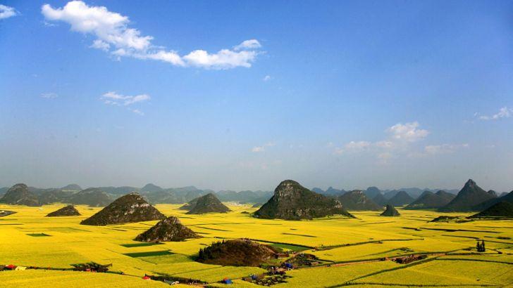 Luoping: donde la primavera se viste de oro