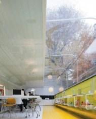 Trabajar bajo árboles en Madrid - Estudio-Arquitectura.-212x300