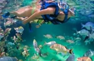 Xel-Há, turismo sostenible en la Riviera Maya - Xel-ha-300x196