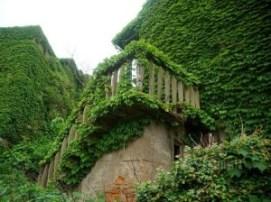 El pueblo verde de Zhoushan (China). - Naturaleza-y-arquitectura-300x224