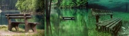 Grüner See (Austria) - Banco-300x84