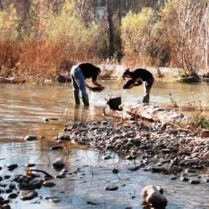Búsqueda del oro en el río Segre - buscaor-300x300