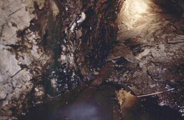 Mina de Petróleo de Riutort - Petróleo supurando de la roca (4)