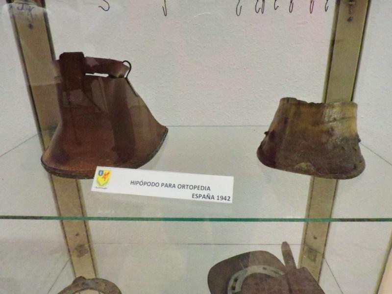Museo Veterinaria Militar - Hipópodos, o prótesis para caballos.