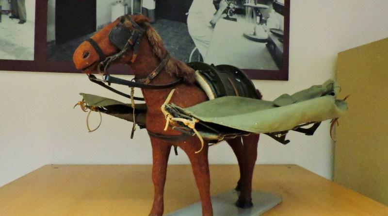 Museo Veterinaria Militar - Ambulancia hipomóvil.