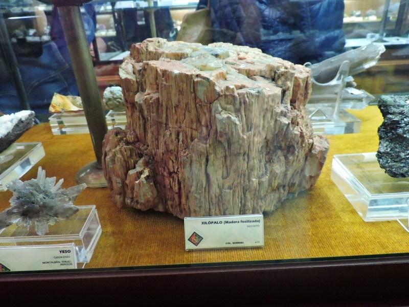 """Museo Histórico-Minero - Xilópalo, madera cuyos componentes orgánicos han sido sustituidos por minerales, que la han """"petrificado""""."""