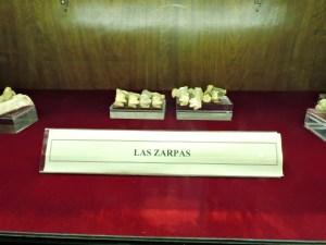 Museo Histórico-Minero - Zarpas de oso pardo.