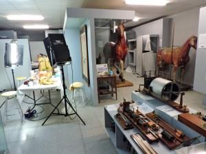 Museo Veterinario Complutense - En la misma sala conviven reproducciones de animales, aparatos antiguos y el banco de trabajo de la restauradora.