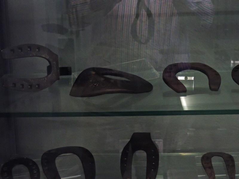 Museo Veterinario Complutense - Diversas herraduras especiales de caballos (quirúrgicas, terapéuticas, o higiénicas).