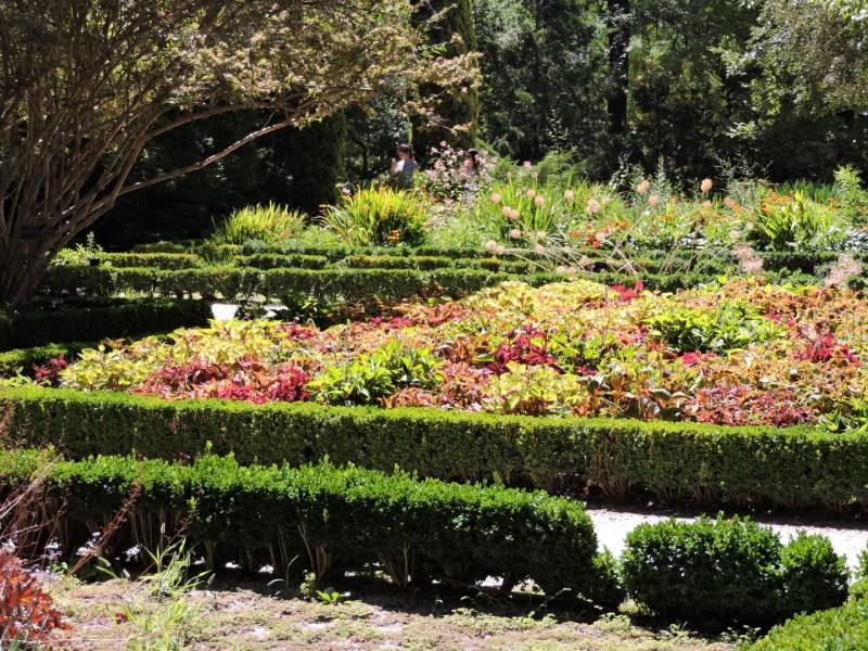 Jardín Botánico Madrid -