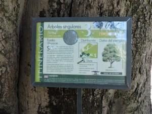 Jardín Botánico Madrid - Los ejemplares más importantes tienen una ficha descriptiva completa.