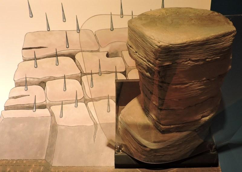 El Torcal de Antequera - La roca caliza es muy porosa. Cuando el agua se congela, produce fracturas, que generarán bloques.