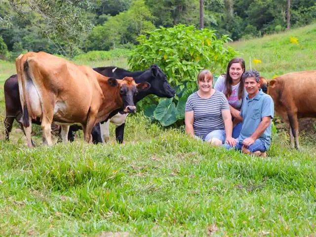 Com rebanho híbrido, família encontra alternativa para a produção de leite em áreas em declive
