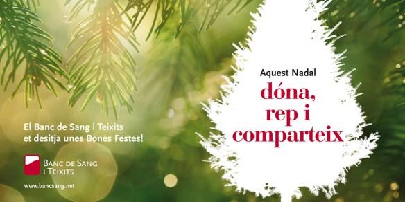 Donació de sang Nadal 2013