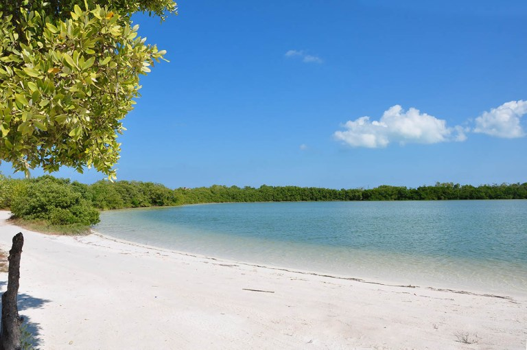 Punta Cocos Holbox