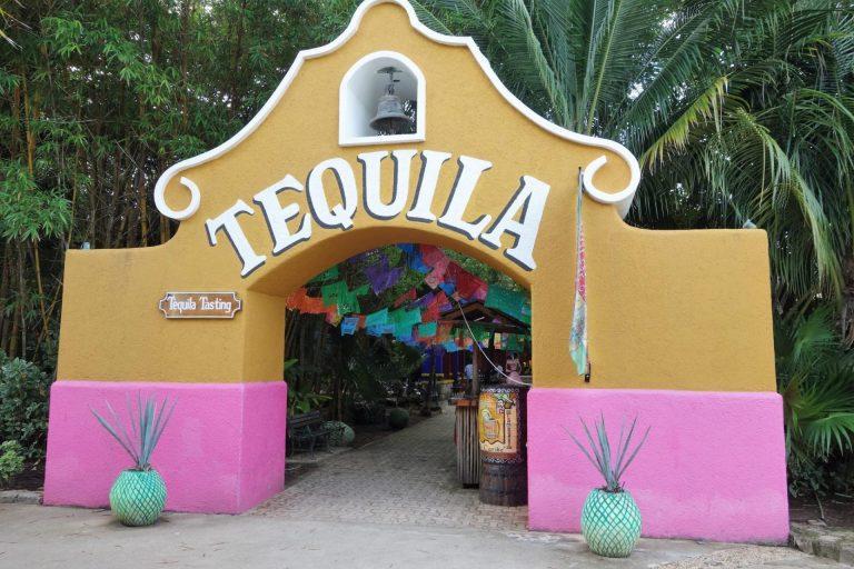 O que fazer no Discover Mexico Park