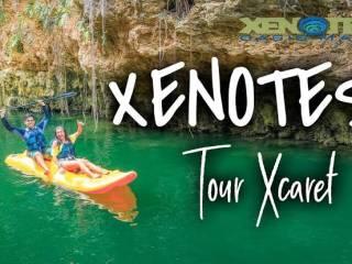 Tour Xenotes: Conheça 4 belos cenotes na Riviera Maya