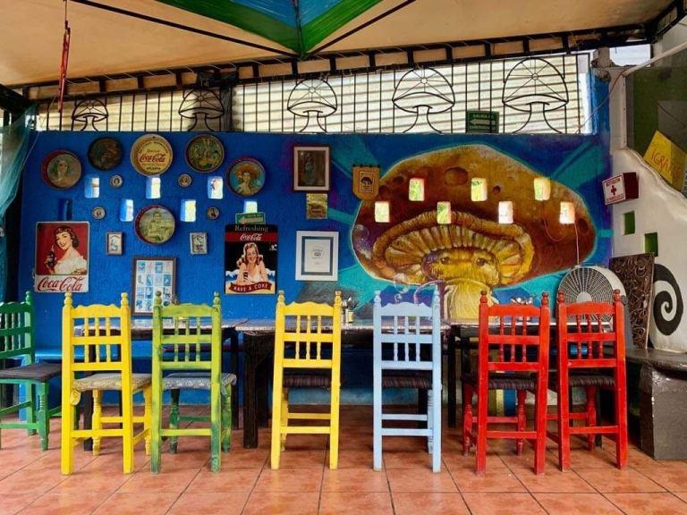 Restaurantes vegetarianos em Playa del Carmen