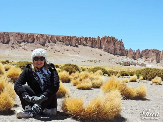 Salar de Tara, Atacama, Chile