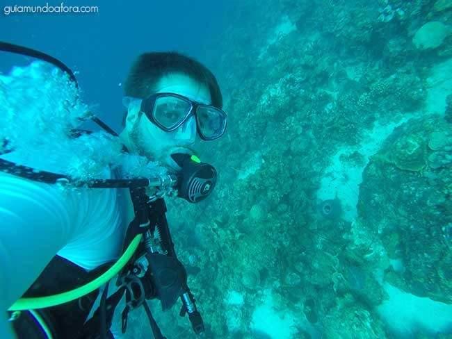 Diving at Curaçao