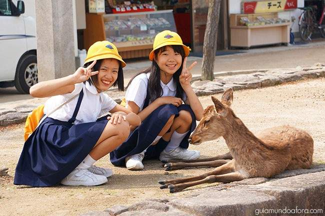 Japonesas com bambis