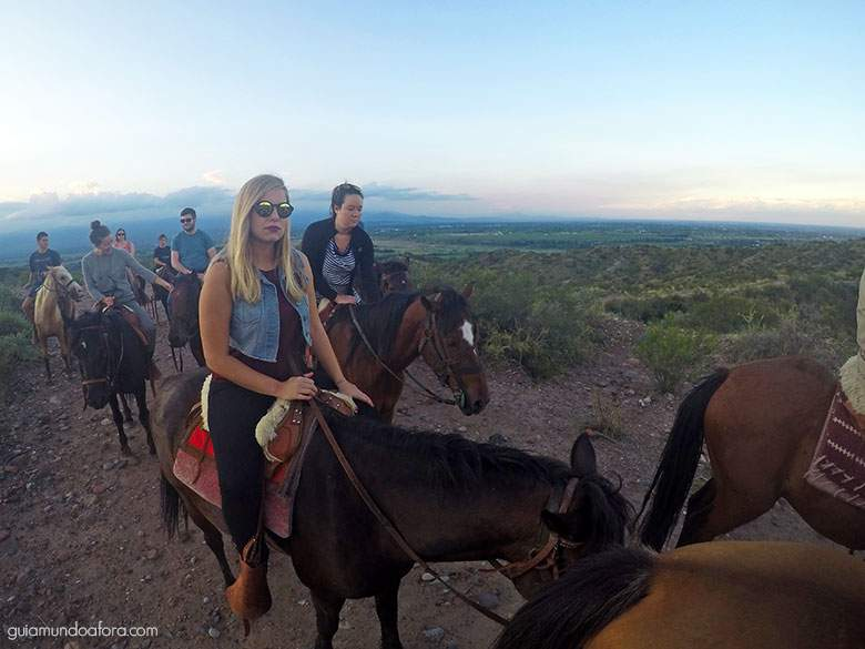 cavalos em Mendoza