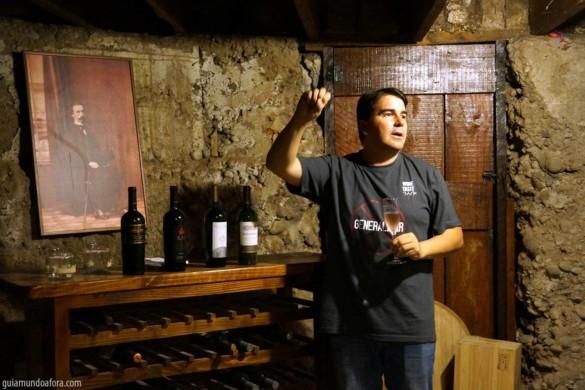 Mini curso de vinhos em Santiago em português: Wine Taste 360