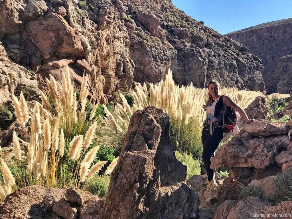 Trekking Guatin no deserto do Atacama