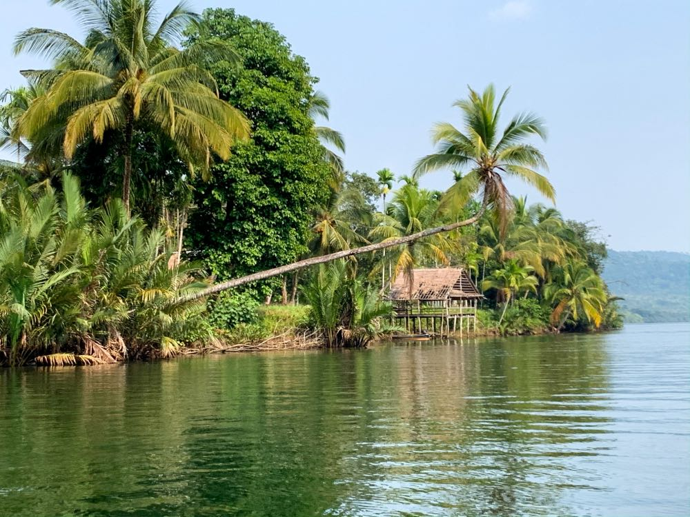 Muita natureza no 4 Rivers Lodge Camboja