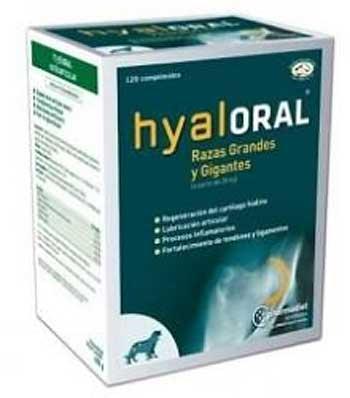 Condoprotectores Hyaloral