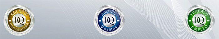 Certificado Universitario Internacional DQ