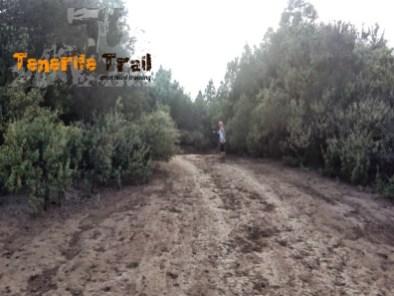 Pista a La Orotava (foto 25)