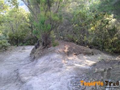 Detalle del sendero (derecha dirección Roque Negro)