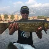un anno di pesca
