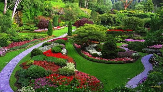 giardino progettato con fiori colorati