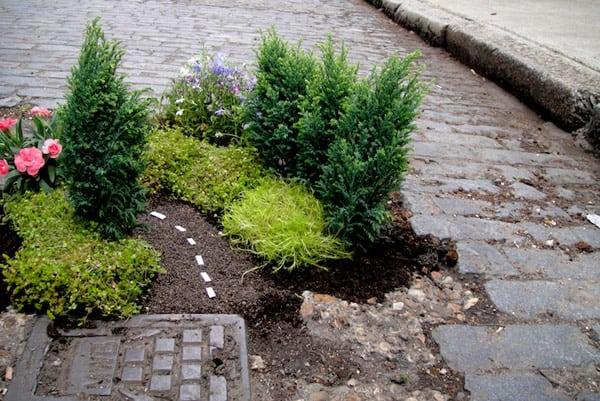 Giardini in miniatura per sensibilizzare sulla condizione delle strade