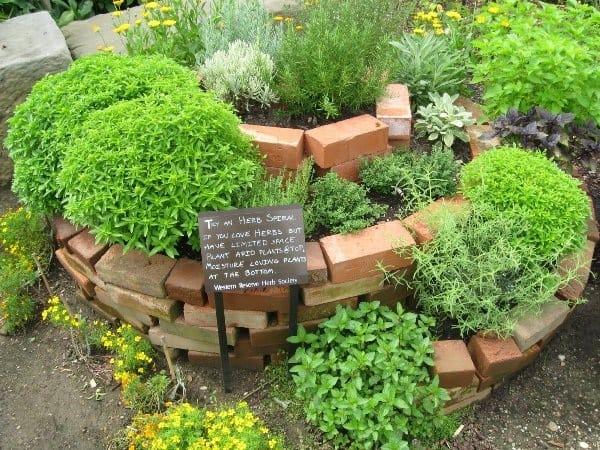 come costruire una spirale di erbe aromatiche