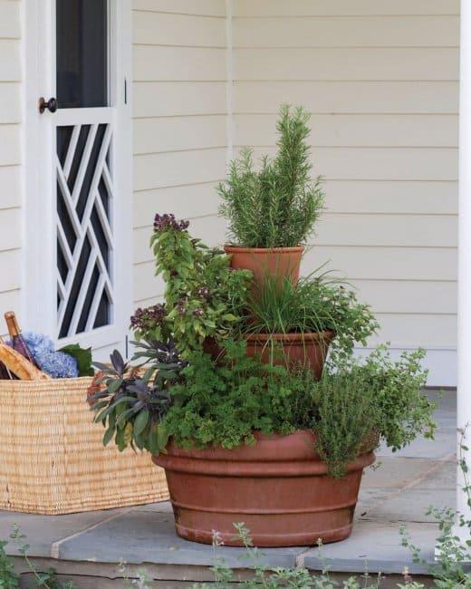 Come realizzare una torre di erbe aromatiche