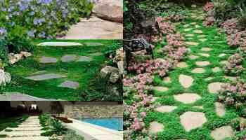 15 idee economiche per decorare il giardino | guida giardino - Come Abbellire Il Giardino Di Casa
