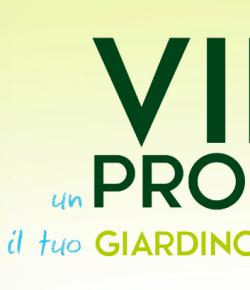 Concorso Click & Garden: vinci un progetto per il tuo giardino o terrazzo!